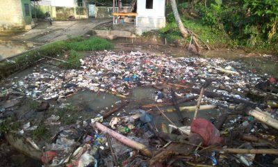 persawahan yang terkena dampak banjir sampah